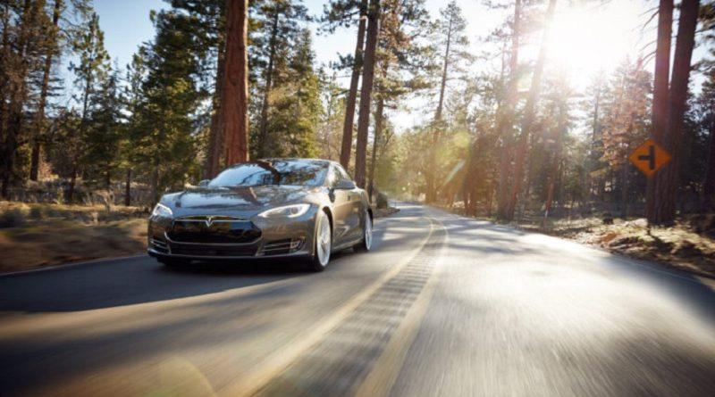 I nemici di Tesla: insetti e schadenfreude