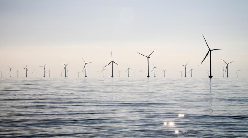 Soffiano venti verdi sui due lati del Mare del Nord